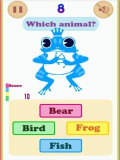 Image Animals & Colors